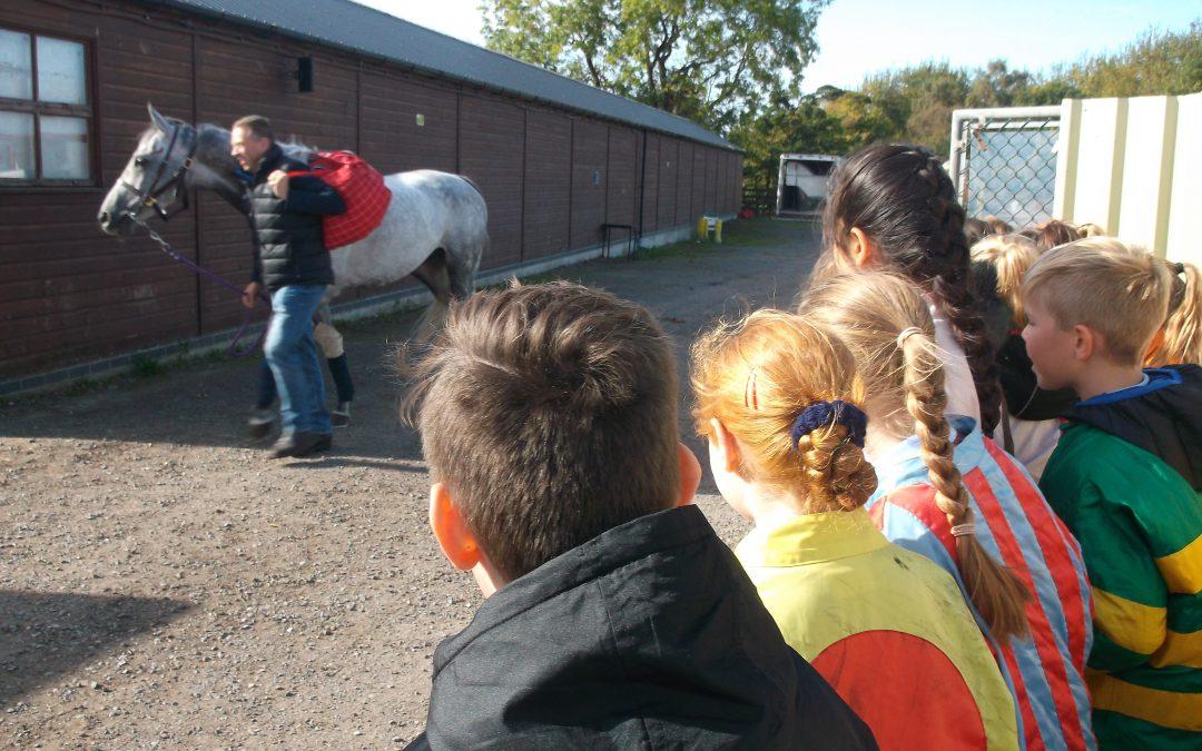 Y6 Visit to Sedgefield Racecourse